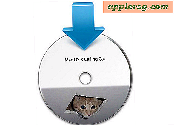 "Mac OS X 10.7 ""Ceiling Cat"" Alpha Build"
