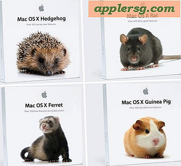 Alternatieve Mac OS X-namen