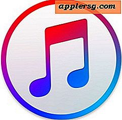 Fjern Duplicate Songs fra iTunes