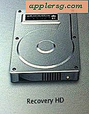 "Sletning af Mac OS X 10.7 Lion ""Recovery HD"" Partition"