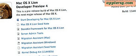 Mac OS X Lion Developer Preview 4 kan nu downloades