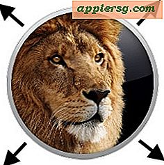 Mac OS X 10.7 Informations sur la licence en volume Lion pour les clients Education et Business