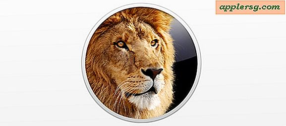 Opgraderer til Mac OS X 10.7 Lion