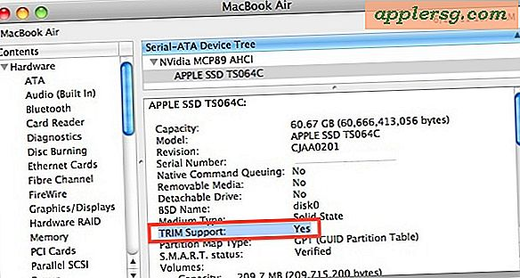 TRIM SSD Support Aktiveret i Mac OS X 10.6.8 Update