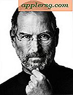 "Steve Jobs: Death of the Mac ""Completamente sbagliato"""